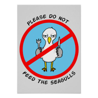 Please do not feed the seagulls poster