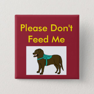 Please Dont Feed Me SD Pinback Button