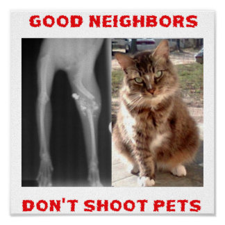 Please Don't Shoot Poster