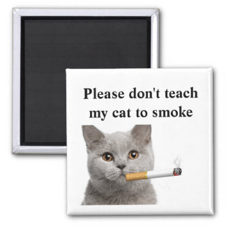 Please don't teach my cat to smoke magnet