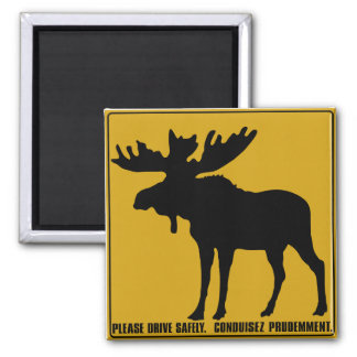 Please Drive Safely,  Traffic Sign, Canada 2 Inch Square Magnet