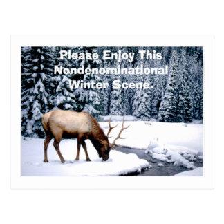 Please Enjoy This Nondenominational Winter Scene. Postcard