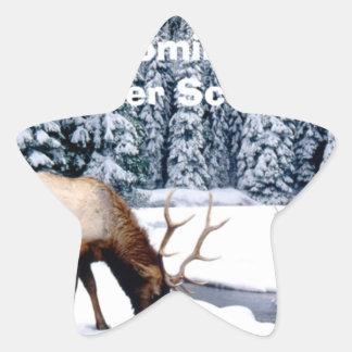 Please Enjoy This Nondenominational Winter Scene. Star Sticker