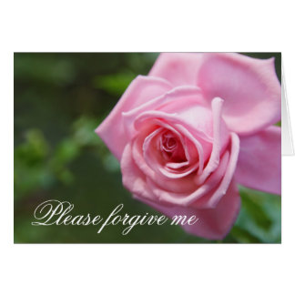 Please forgive me apology card with pink rose