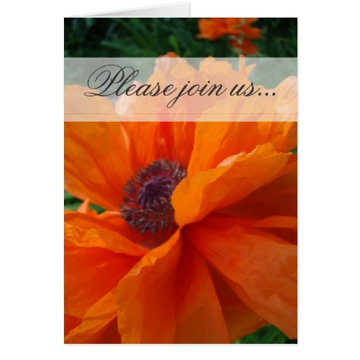 Please join us orange greeting card