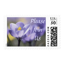Please Join Us postage stamps