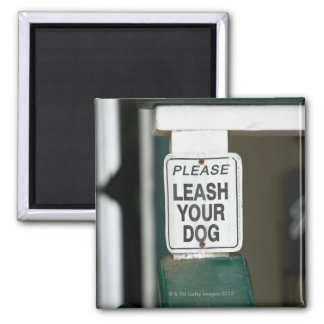 Please leash your dog sign 2 inch square magnet