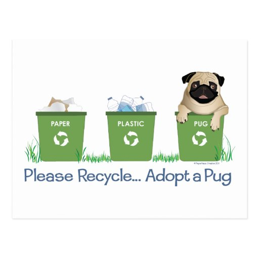 Please Recycle, Adopt A Pug Postcards