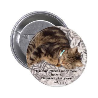 Please rescue a cat 2 inch round button