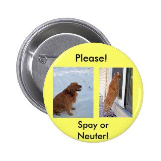 Please!  Spay or Neuter! Button