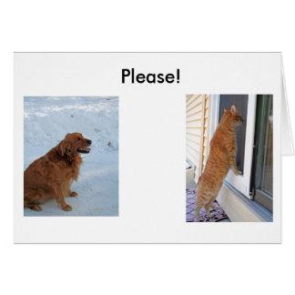 Please!  Spay or Neuter! Card