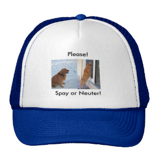 Please!  Spay or Neuter! Mesh Hats