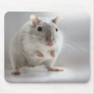 PLEASED TO MEET YOU MOUSE PAD