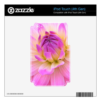 Pleasing Purple iPod Touch 4G Skins