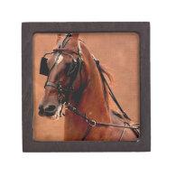 Pleasure Harness Saddlebred Digital Art Premium Jewelry Boxes