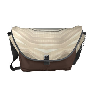 Pleated Sheer Messenger Bags