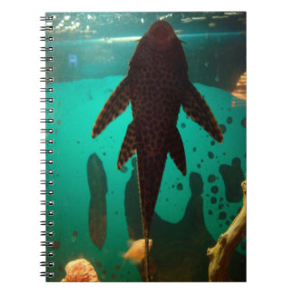 Pleco Spiral Notebook