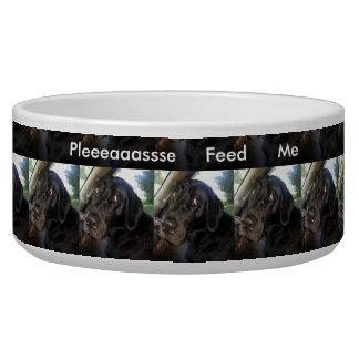 Pleeeaaassse Feed Me Dog Bowl