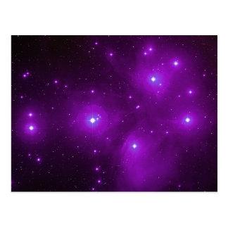 Pleiades in Purple Postcard