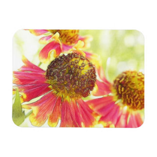 ¡Plena floración - Heleniums! Iman Rectangular