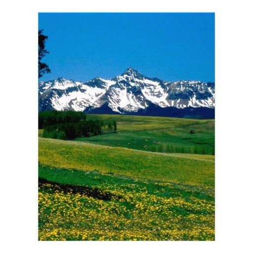 Plena floración San Juan Ains Colorado del parque Membrete A Diseño