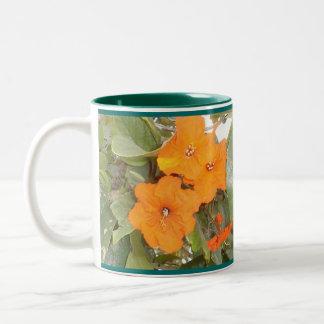 Plena floración taza