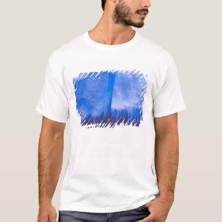 Pleneau Iceberg Graveyard, Antarctica: Blue T-Shirt