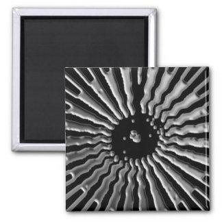 Plexos solares - estrella de plata imanes para frigoríficos