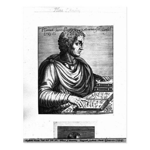 Pliny the Elder Postcard