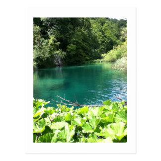 Plitvicer lakes Croatia the Green lagoon Postcard