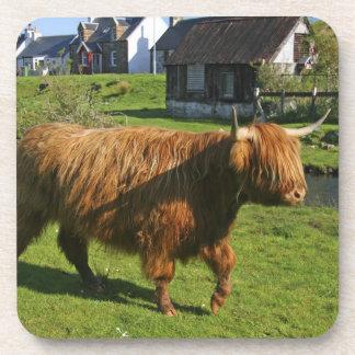 Plockton Escocia El hacer de Coooo melenudo vac Posavasos De Bebidas