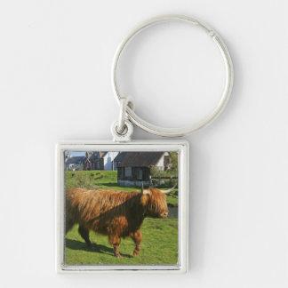 Plockton, Scotland. Hairy Coooo's (cows) doing Keychain