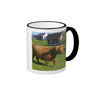 Plockton, Scotland. Hairy Coooo's (cows) doing Mug