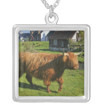 Plockton, Scotland. Hairy Coooo's (cows) doing Silver Plated Necklace