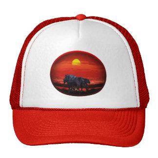 Ploken Pony Cap Trucker Hats