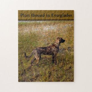 Plott Hound In Everglades Florida Jigsaw Puzzle