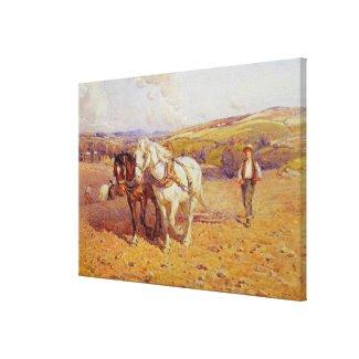 Shire Canvas