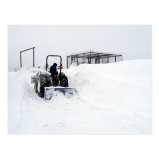 Ploughing Snow on the Ranch Postcard