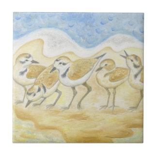 Plover Birds tile