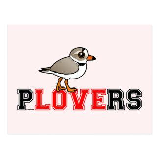 Plovers Love Postcard