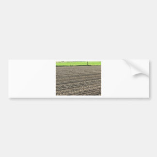 Plowed field in the late afternoon in Tuscany Bumper Sticker