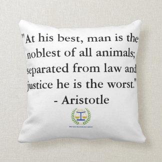 PLSA Pillow