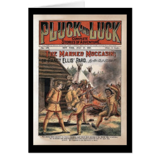 Pluck and Luck Complete Stories 1907 Card
