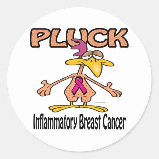 Pluck Inflammatory Breast Cancer Awareness Design Round Stickers