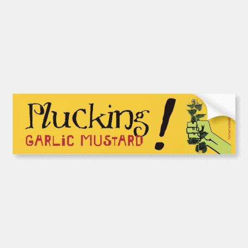 Plucking Garlic Mustard! Car Bumper Sticker