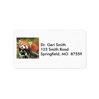 Plucky Red Panda Eats Bamboo, Makes Funny Face Address Label