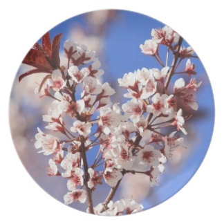 Plum Blossom Plate
