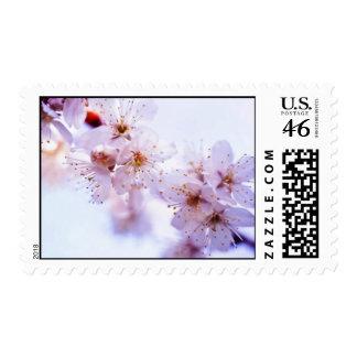 Plum Blossom Postage