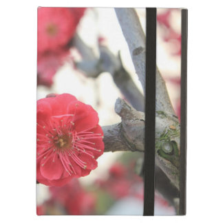 plum blossom spring pink flowers cover for iPad air