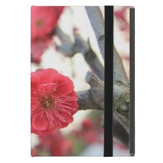 plum blossom spring pink flowers cover for iPad mini